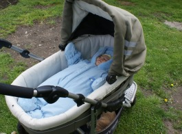 Happy outside in her pram, after a bumpy cross country walk, her favourite to fall asleep to. But who's that in the bottom of the pram?